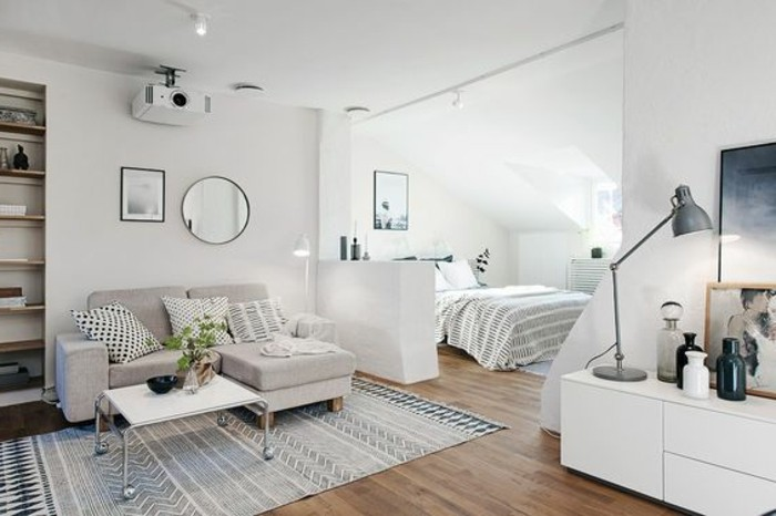 1-joli-studio-en-parquet-tapis-blanc-noir-bleu-canape-gris-2-personnes-meubler-un-studio