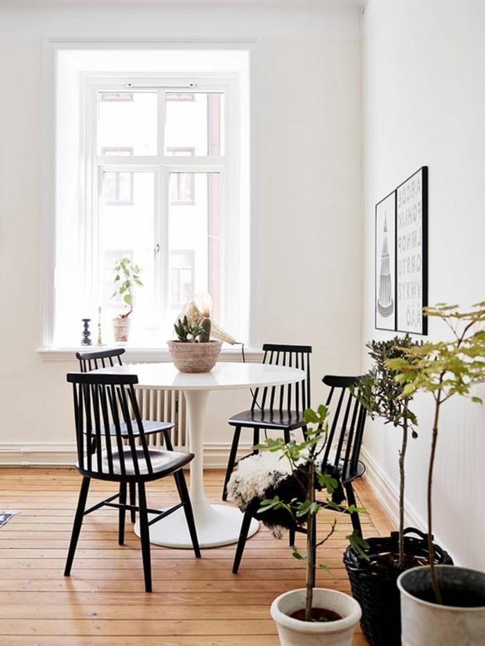 1-salle-a-manger-sol-en-planchers-clairs-table-tulipe-blanche-en-plastique-chaises-en-bois