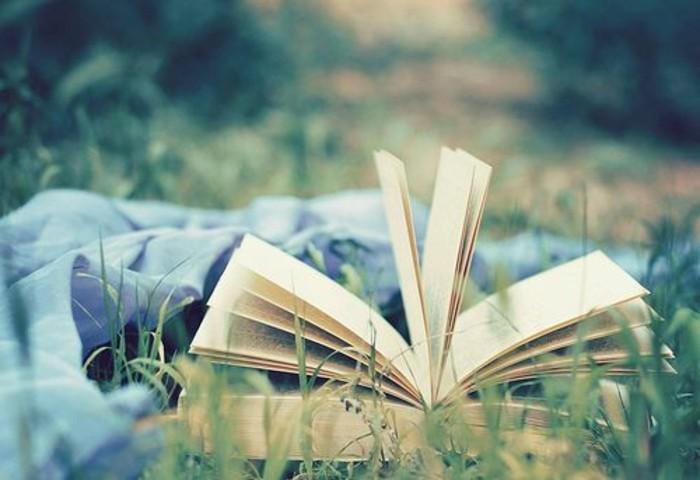 3-quoi-lire-cette-ete-meilleures-ventes-livres-2016-meilleures-ventes-livres