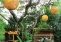60 idées pour bien agencer son jardin