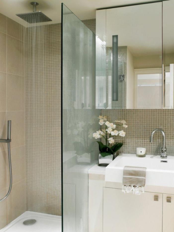 aménagement-petite-salle-de-bains-meuble-sous-vasque-cabine-de-douche
