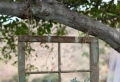 La déco jardin récup en 41 photos inspirantes