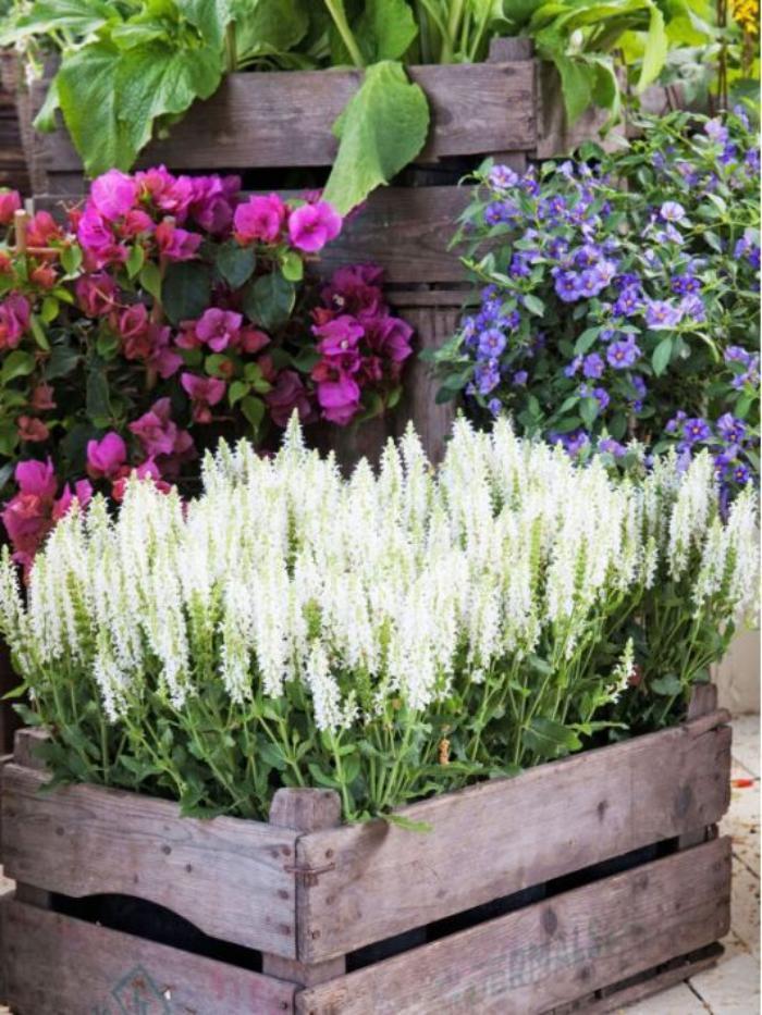déco-jardin-récup-caisse-pot-de-fleurs-idée-déco-avec-récup