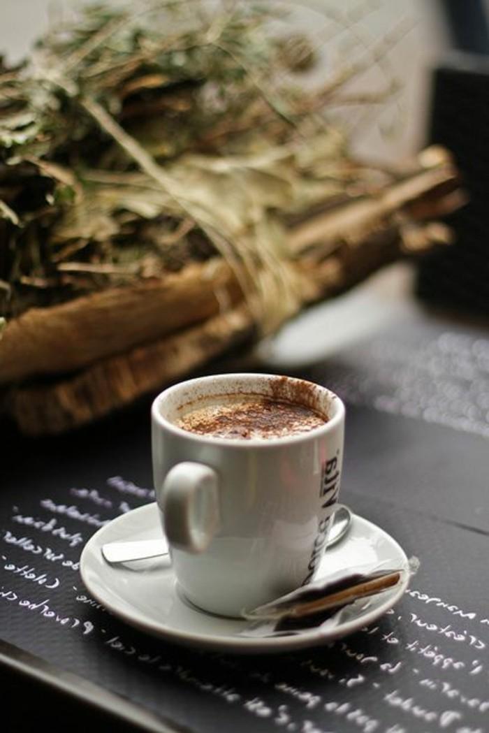 faire-mousser-le-lait-pour-faire-cappuccino-vous-mêmes-recette-cappuccino-au-lait