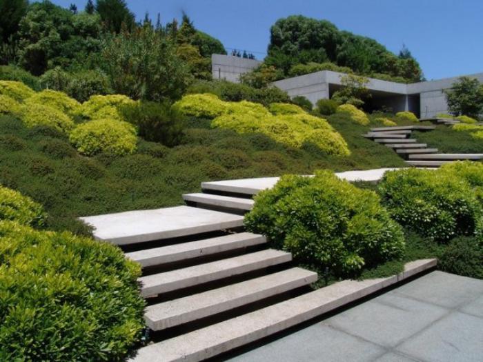 jardin-en-pente-aménagement-jardin-en-pente-escalier-et-arbustes