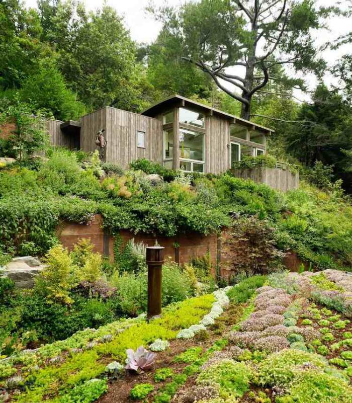 jardin-en-pente-maison-en-bois-plantes-couvre-sol