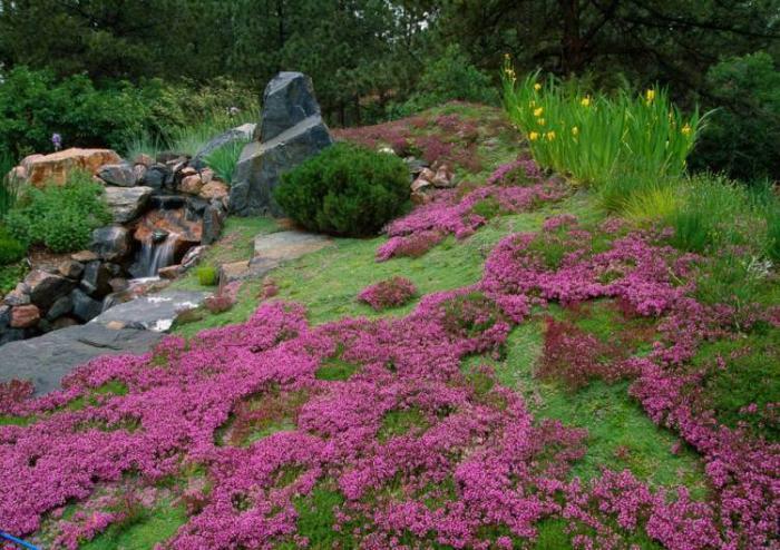 Comment avoir un joli jardin en pente jolies id es en for Jardin japonais plantes couvre sol