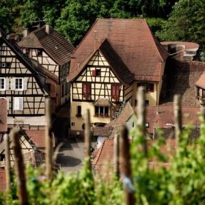 Sur la route des vins d' Alsace - ballade virtuelle en 44 photos