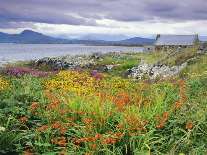 magnifique-idée-voyager-en-irlande-belles-vues-printemps