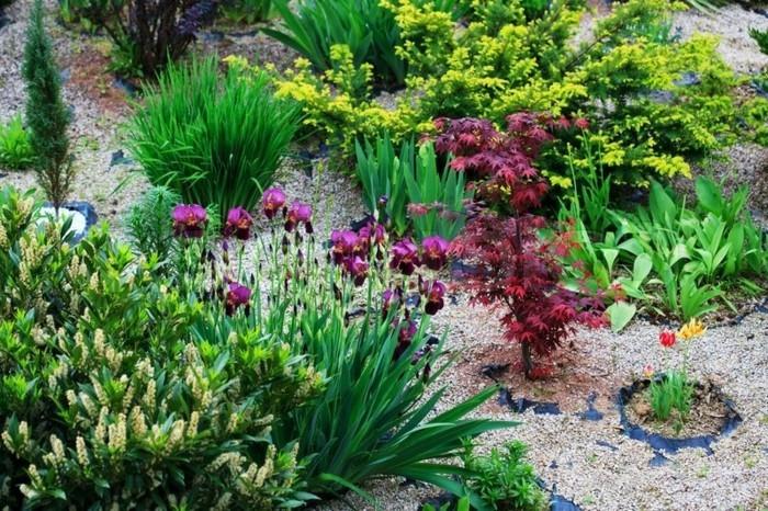 open-endroit-comment-créer-un-jardin-petit-pierres