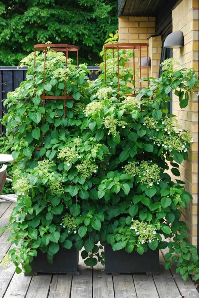paravent-de-jardin-tout-en-verdure