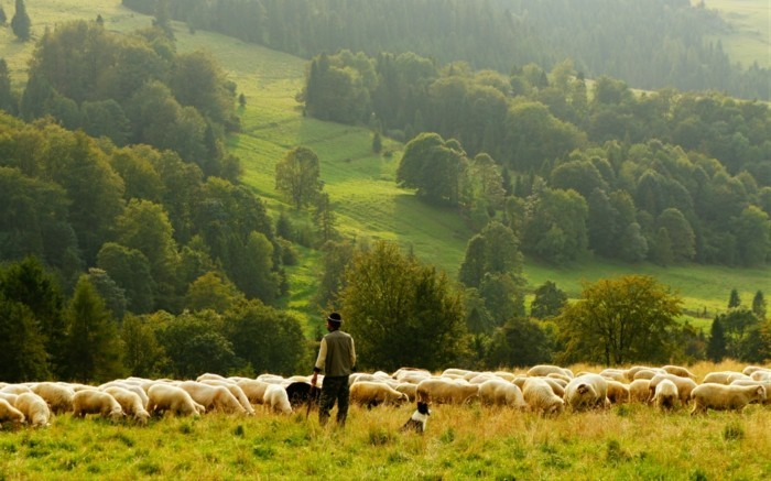 photo-nature-tourisme-irlandais-visite-en-photos-vie-villageuse