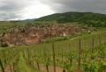 Sur la route des vins d' Alsace – ballade virtuelle en 44 photos