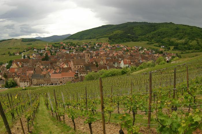 la-route-des-vins-d'Alsace-Riquewihr