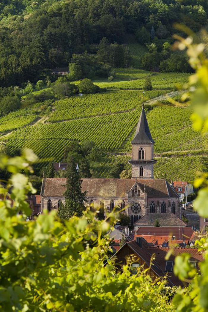 route-des-vins-d'Alsace-église-ancienne-au-sein-de-la-verdure