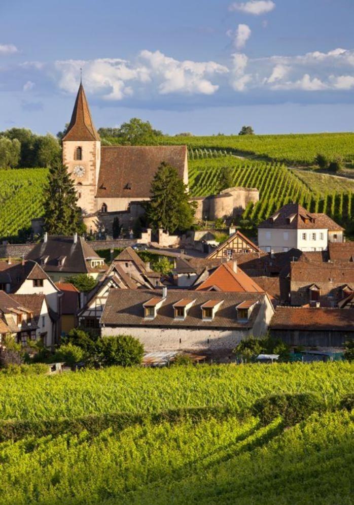 la-route-des-vins-d'Alsace-vue-vers-Hunawihr