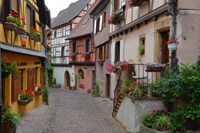 route-des-vins-d'Alsace-architecture-pittoresque-et-fleurs