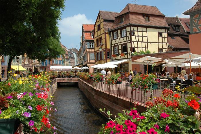 route-des-vins-d'Alsace-découvrir-un-paradis-fleuri