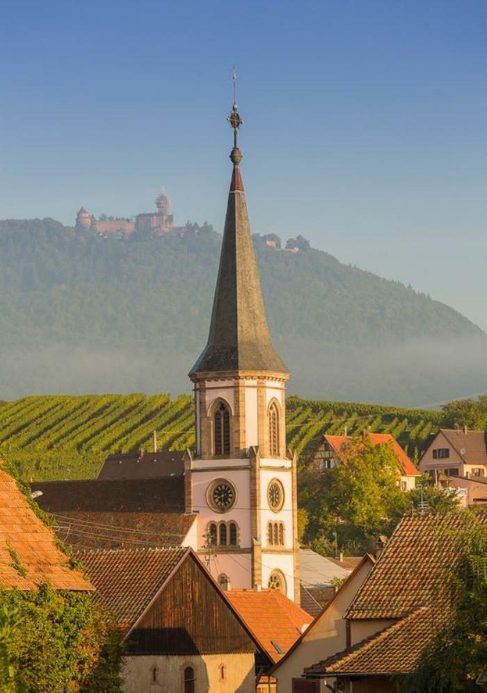 route-des-vins-d'Alsace-jolis-paysages-et-gastronomie-impressionnante