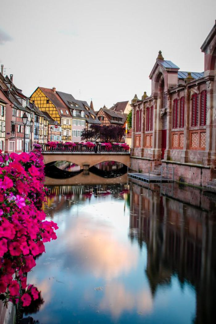 route-des-vins-d'Alsace-le-charme-de-Colmar