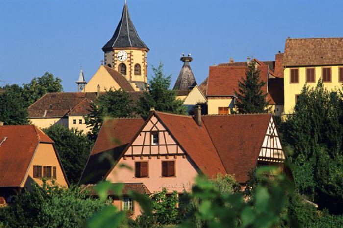 la-route-des-vins-d'Alsace