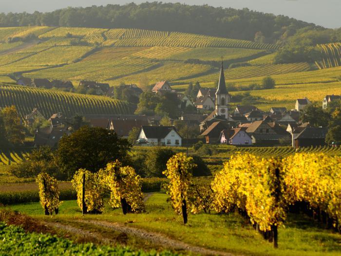 route-des-vins-d'Alsace-village-pittoresque-sur-la-route-des-vins