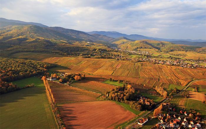 la-route-des-vins-d'Alsace-région-alsacienne