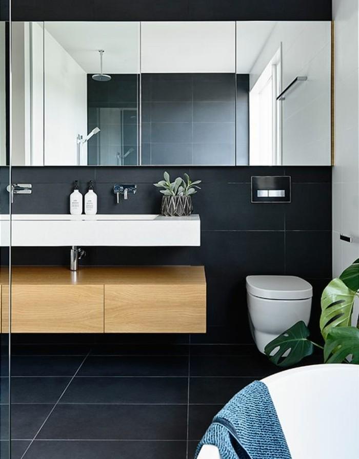salle-de-bain-anthracite-foncé-quelle-couleur-salle-de-bain-choisir-baignoire-blanche
