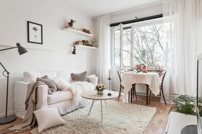 salon-beige-tapis-en-fourrure-beige-canape-blanc-fenetre-grande-petit-studio-20m2