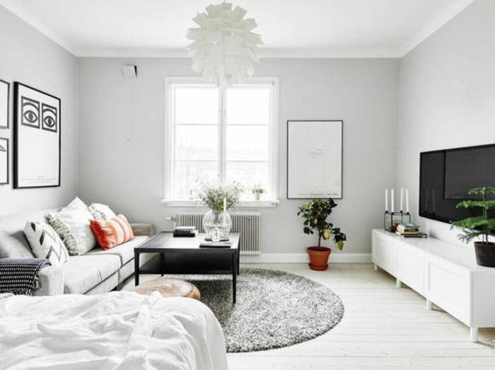 salon-chic-tapis-gris-canape-gris-sol-en-planchers-en-bois-déco-studio-étudiant-murs-gris-pale