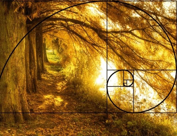 suite-de-Fibonacci-arbres-aux-feuilles-jaunes-resized