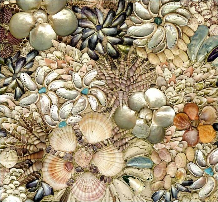 suite-de-Fibonacci-coquillages-de-mer-resized