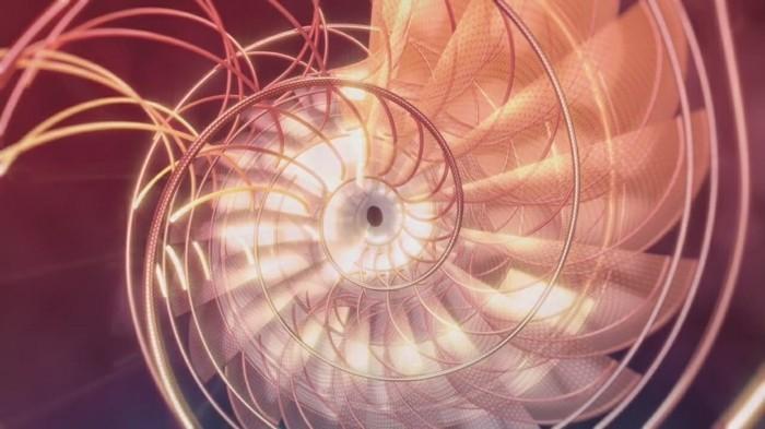 suite-de-Fibonacci-la-nature-est-parfaite-les-chiffres-l'-expliquent-resized