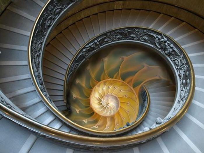 suite-de-Fibonacci-spirale-en-forme-de-coquillage-escalier-resized