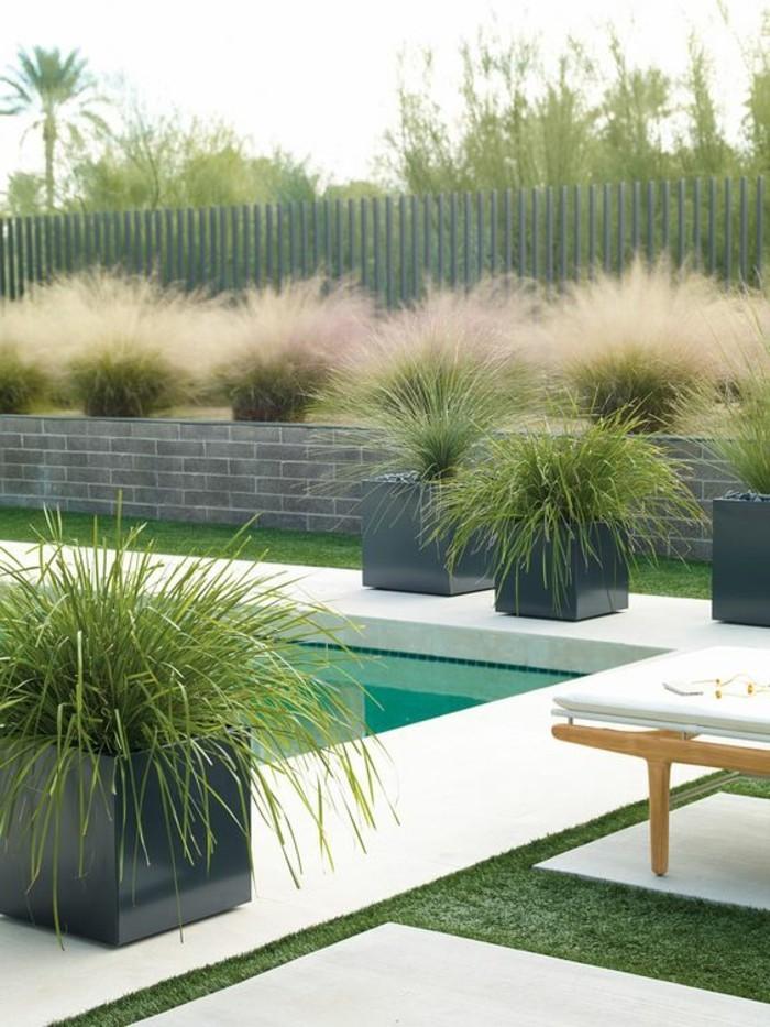 02-entretien pelouse autour d'une piscine