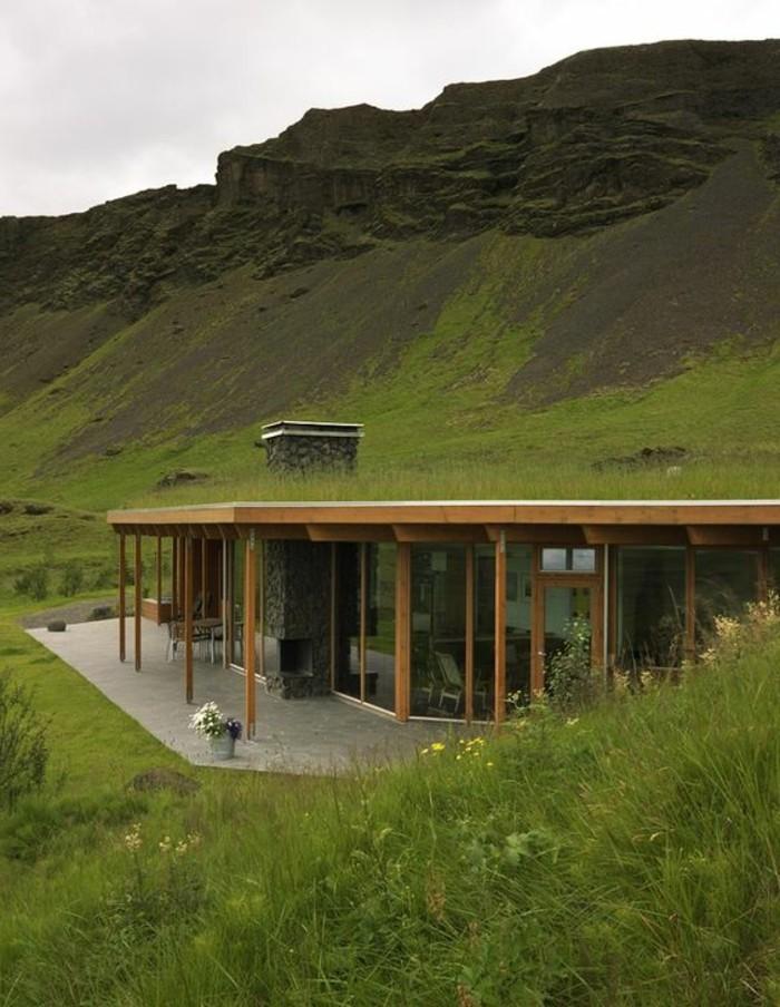 03-entretien pelouse sur un toit