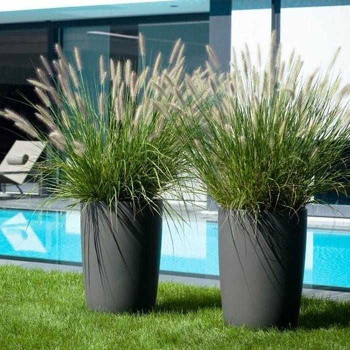 08-entretien pelouse pres d'une piscine