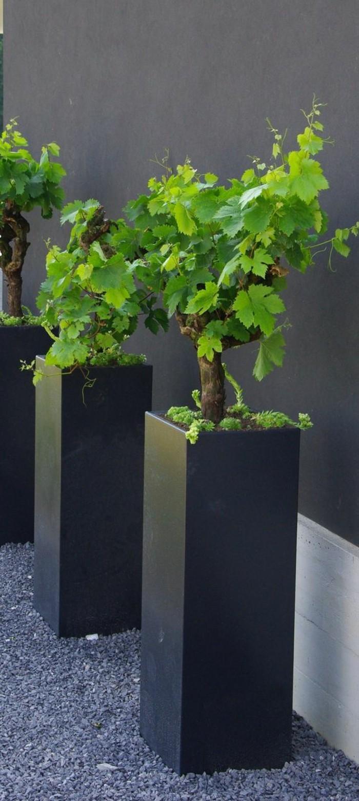 13-Sculpture de jardin trois plantes