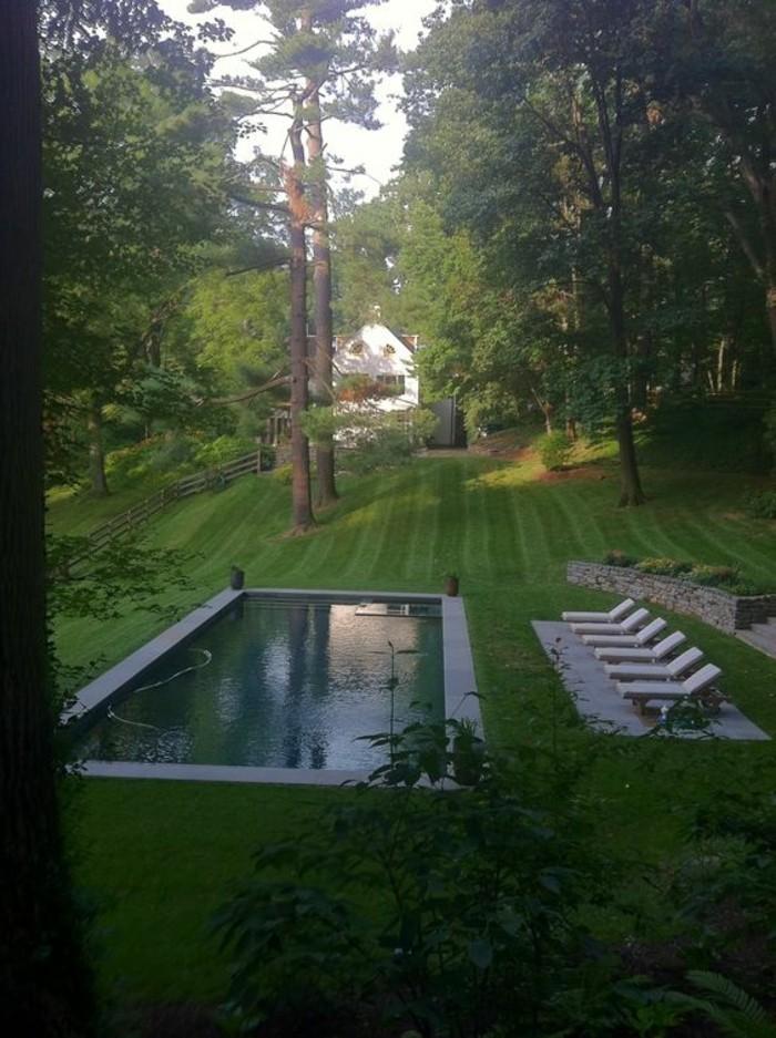 23-entretien de la pelouse - une maison, une piscine
