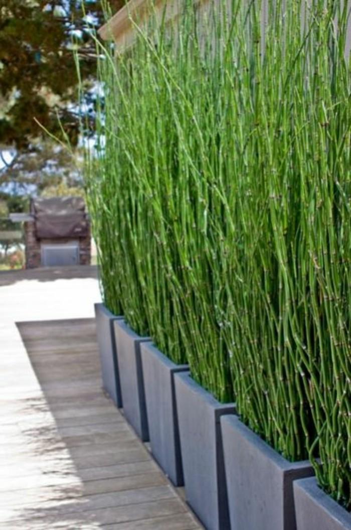31-entretien de la pelouse - herbe haute