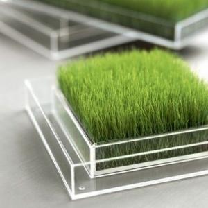 Entretien pelouse - plus de 80 photos pour vous!