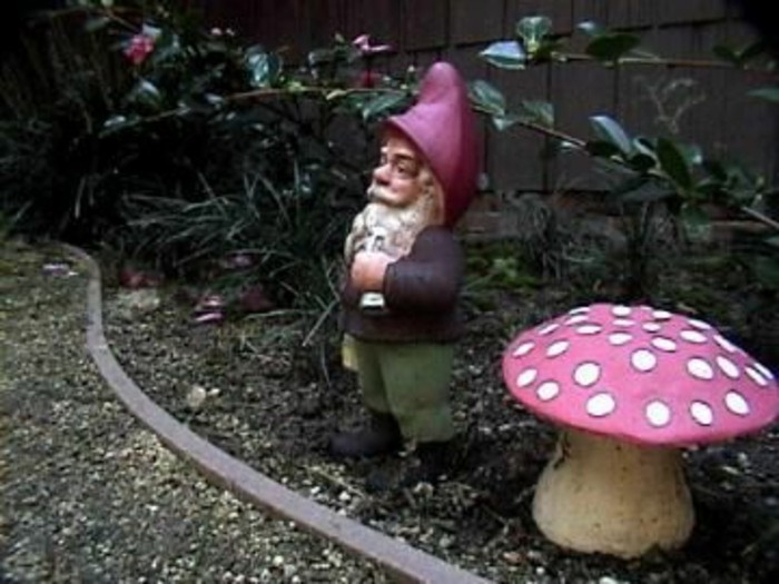 49-Nain de jardin pas cher pre d'un champignon