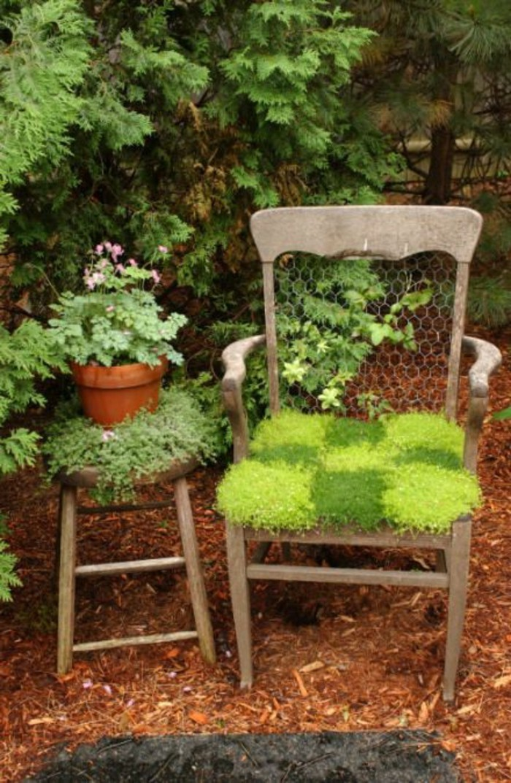 49-gazon entretien - une chaise en verdure