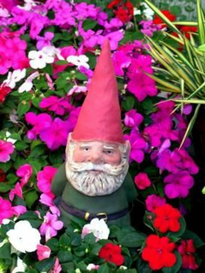 57-Nain de jardin pas cher entoure de fleurs