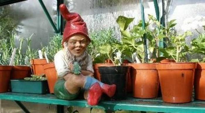 58-Nain de jardin pas cher assis pres de quelques pots de fleur