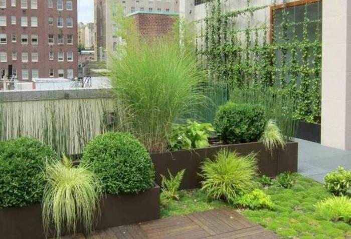 79-entretien pelouse une immeuble