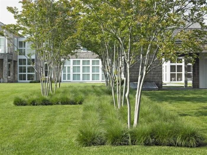 89-entretien d'une pelouse - arbres vertes