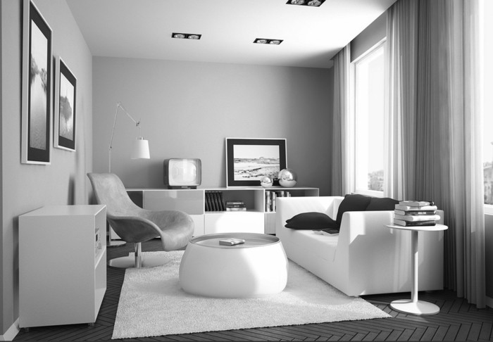 idée-déco-petit-salon-décorer-décorer-son-salon-en-noir-et-blanc-lignes-épurés-disign-élégant-et-simple