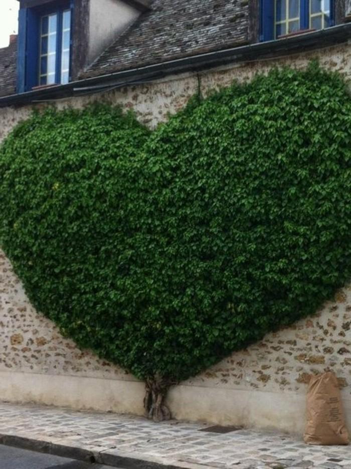 09-Mur de clôture. Un coeur.