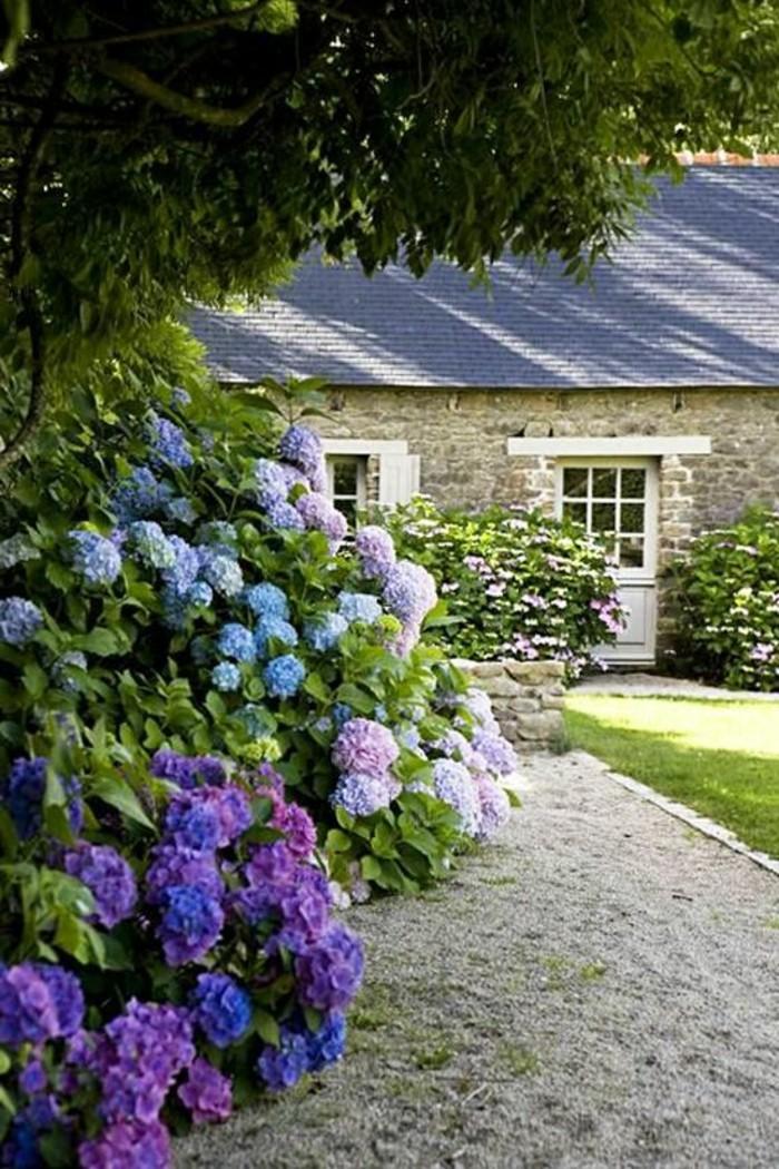 106-Murs de cloture. Fleurs lilas.